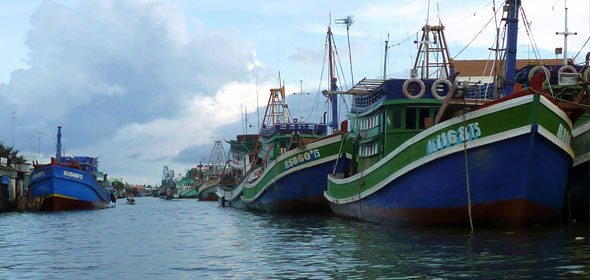 Exploratory trips throughout the south of the Mekong Delta