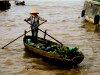 Round Trips to the Mekong Delta from Saigon
