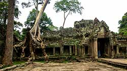 Tour from Phnom Penh to Angkor Wat including tour of Angkor Wat